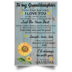 To my Granddaughter Never forget how much I love you poster