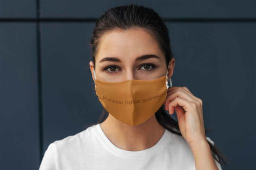 Pumpkin Spice Scented face mask